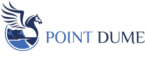point-dume-ltd-by-airi-ventures'-logo